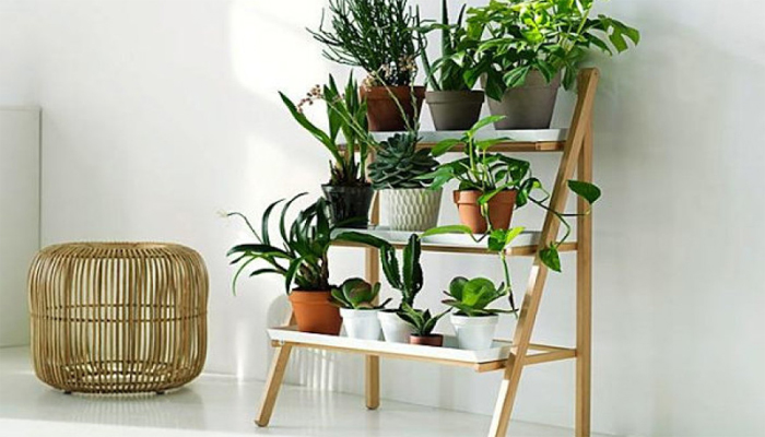 3- Ladder PlantStand