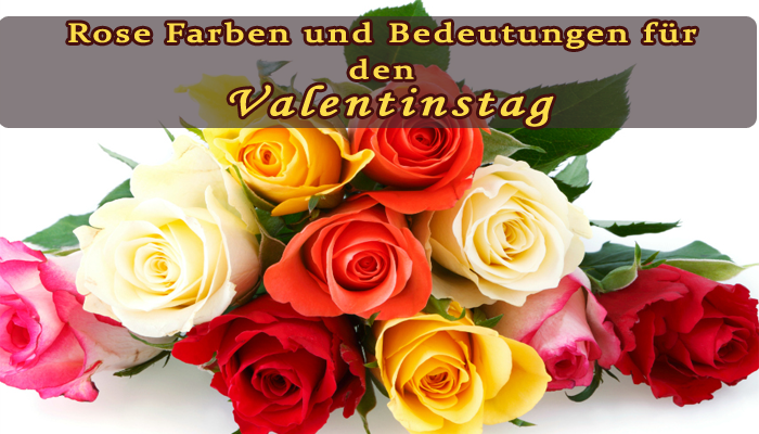 qblumen blog rosen farben und bedeutungen f r valentinstag. Black Bedroom Furniture Sets. Home Design Ideas